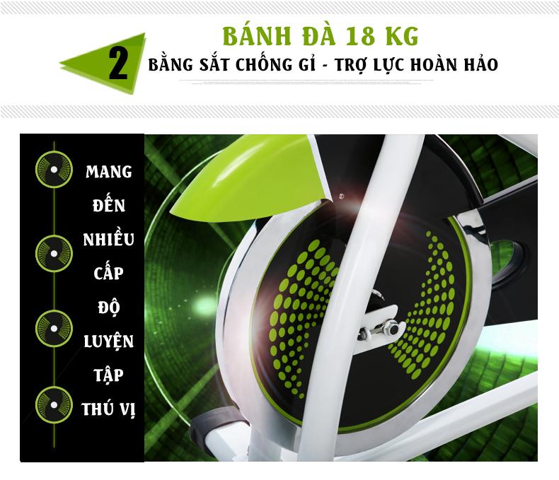 Bánh đà Xe đạp tập ĐẠI Việt DV-6413