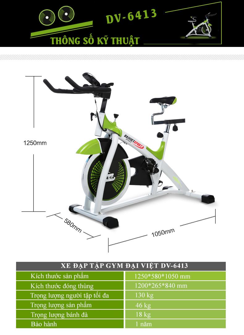 Xe đạp tập thể dục ĐẠI Việt DV-6413